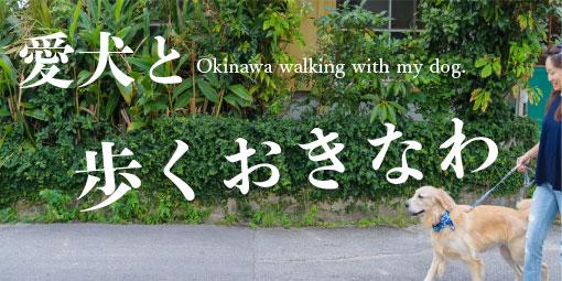 愛犬と歩くおきなわ